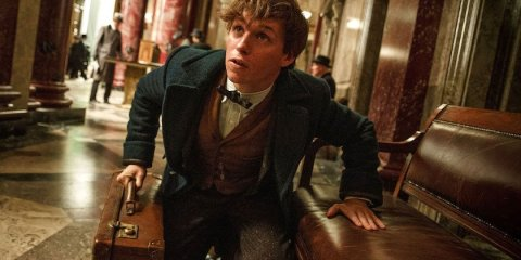 Fantastic Beasts and Where to Find Them - Les animaux fantastiques