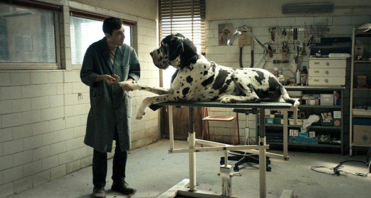 Dogman