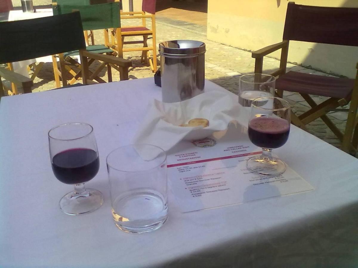 Le fasi della produzione del vino