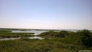 Parco del Delta del Po, panoramica dalla Lanterna Vecchia