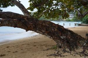 Giamaica, spiaggia Ocho Rios