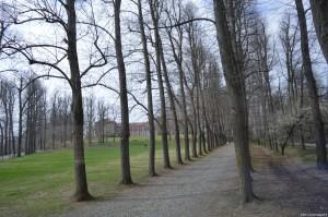Parco e Castello della Mandria