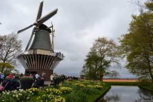 Olanda, Parco Keukenhof