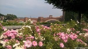 Verona, Ponte Scaligero e Castelvecchio