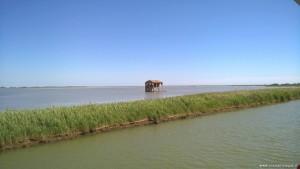 Delta del Po rami meridionali, Sacca di Scardovari
