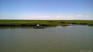Delta del Po rami meridionali, Isola del Bacucco, canneti