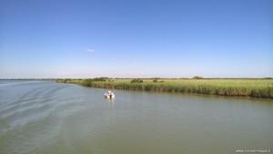 Delta del Po rami meridionali