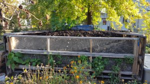 composting in Philly
