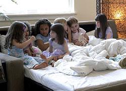 Comfort Sleepers Sleep Sofa Boston American Leather MA