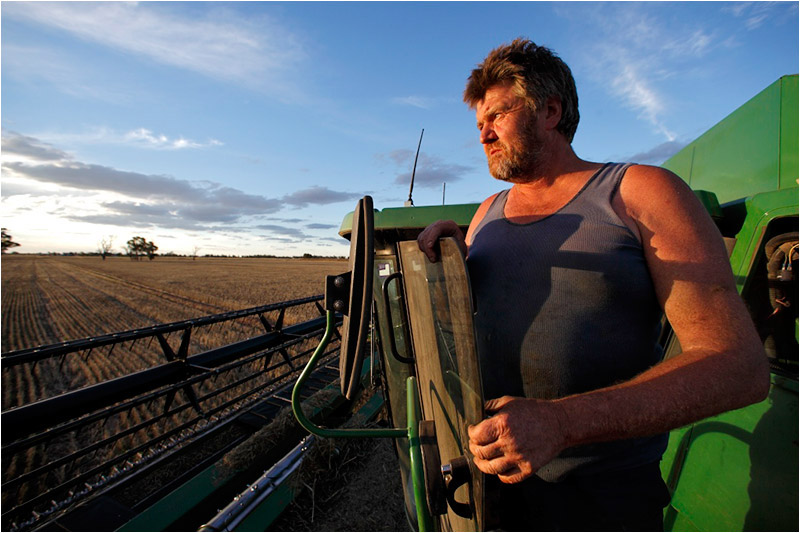 Harvesting withered wheat on a former rice paddy, Gilbert Bain reflects on the prospects of the land he works near Deniliquin, New South Wales.
