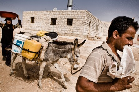 Water is transported from a well near Hebron.