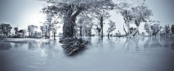 Mekong River Ramsar – Site 999