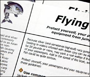 Flying Fish : Asian Carp