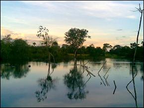 Xingu River, Amazon