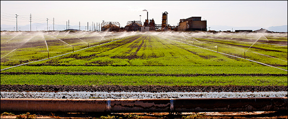 Coming Era of Water Scarcity Prompts Global Industrial Transformation