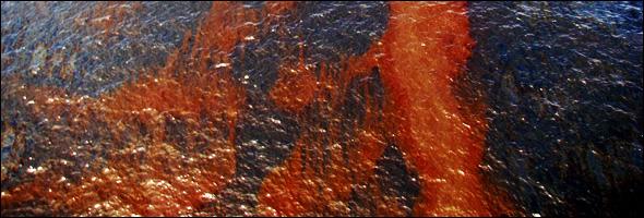 BP Gulf of Mexico Oil Spill Water Energy Deepwater Horizon