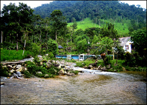 River in Ecuador