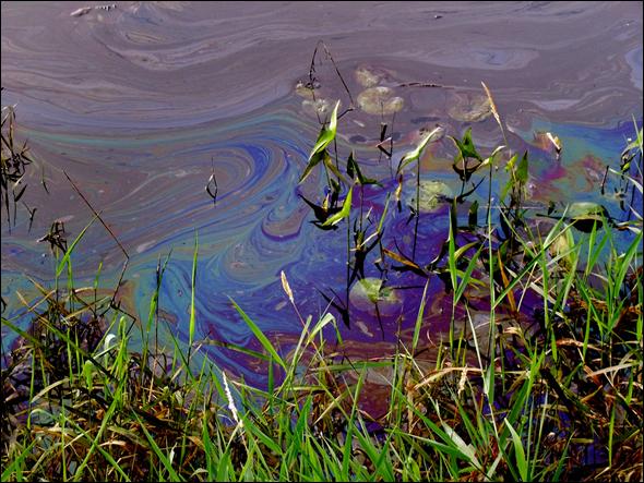 Energy Water Tar Sands Oil Spill Kalamazoo River Michigan Alberta Canada Midwest