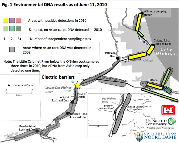 Asian Carp DNA Map