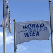 World Water Week
