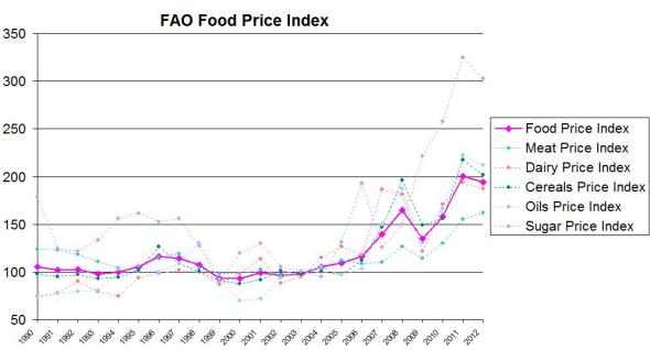 FAO food price index United Nations UN Food and Agriculture Organization