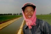 farmer shengyang rice paddy