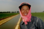 farmer shengyang rice paddy
