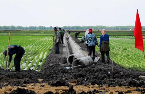 hongxinglong heilongjiang province youyi farm rice paddynortheast china food water energy Choke Point China Circle of Blue Keith Schneider