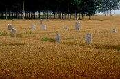 henan province graveyard circle of blue china food energy water grain