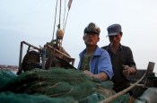 china aquaculture shandong fishing aoshawei bay scallops clams oysters mussels fisherman