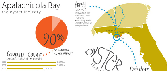 Infographic Apalachicola Bay Oyster industry florida gulf of mexico