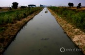irrigation canal Liaohe River Shenbei Liaoning Province China agriculture food production