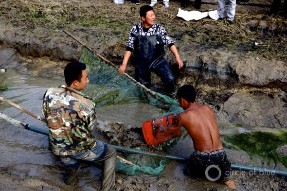 Fish fishing fishermen fisherman china irrigation draining canal Liaohe River Xinmin Liaoning Province