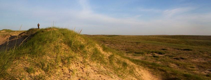 JGanter_grasslands_dune_JG3_2174