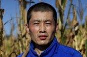 Liu De corn harvest Tongliao Inner Mongolia China farm farmer farming