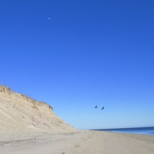The most beautiful country in the world, the United States, presents spectacular scenes of nature in every state, like the Cape Cod shoreline on Earth Day in Chatham, Mass.