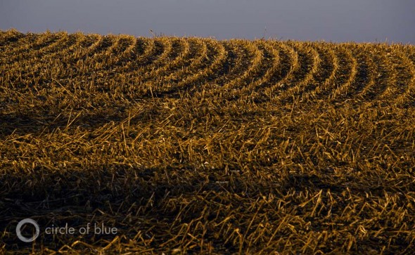 Iowa farm 2012 drought