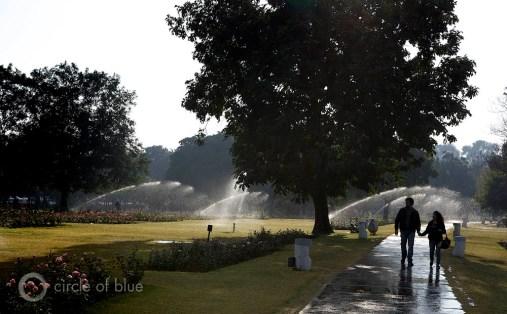 India Chandigarh Haryana Punjab Zakir Hussain Rose Garden botanical Pakistan Lahore Jawaharlal Nehru Le Corbusier French architect union territory water food energy choke point circle of blue wilson center j. carl ganter