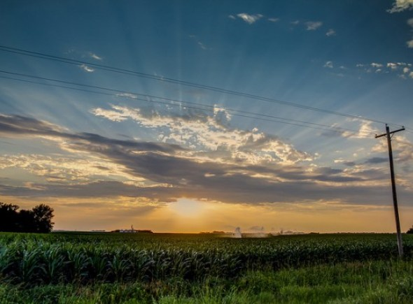 Corn United States Nebraska drought