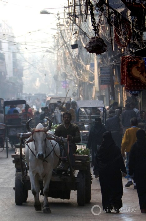 India new delhi old town city market traffic pollution illegal connection electric wire electricity water food energy circle of blue choke point wilson center j. carl ganter