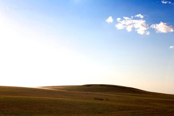 The vast grasslands of Inner Mongolia near Xilinhot.