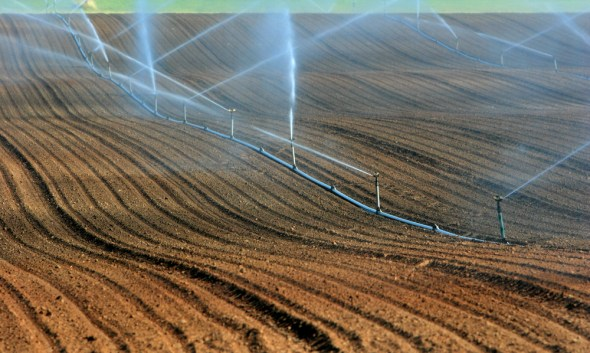 soil moisture agriculture irrigation North America Texas data monitoring