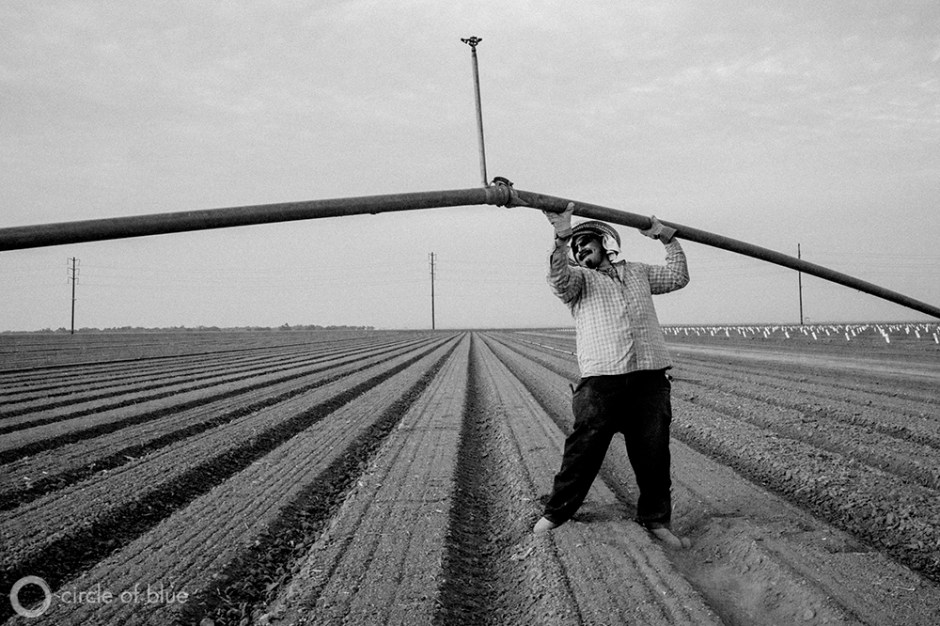 Carlos Sanchez installs irrigation sprinklers in a newly planted onion field in the Westlands Water District in California's Central Valley.