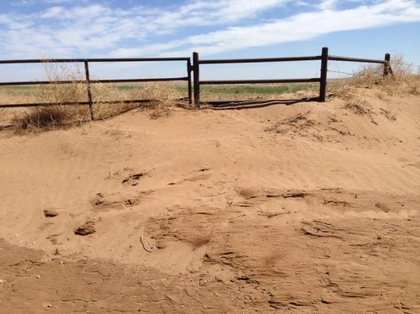 Oklahoma drought dust storms Great Plains agriculture