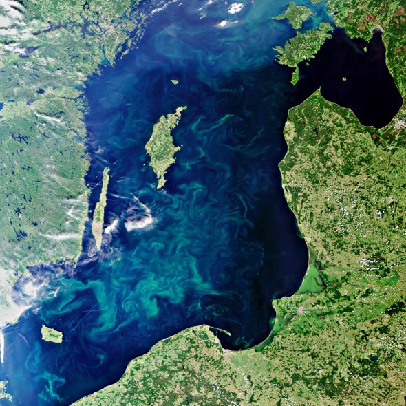 Baltic Sea Algae Bloom