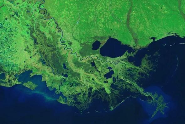 Mississippi River Delta Gulf of Mexico dead zone nutrient pollution