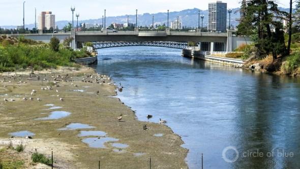 Oakland California stormwater management Lake Merritt restoration San Francisco Bay shore birds estuary