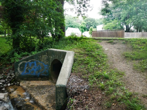 Storm sewer outfall Baltimore Maryland water pollution water quality urban stormwater runoff management