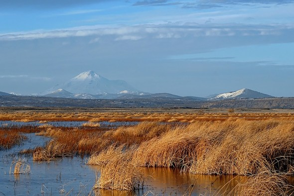 Tule Lake National Wildlife Refuge Upper Klamath River Basin Oregon marsh wetlands