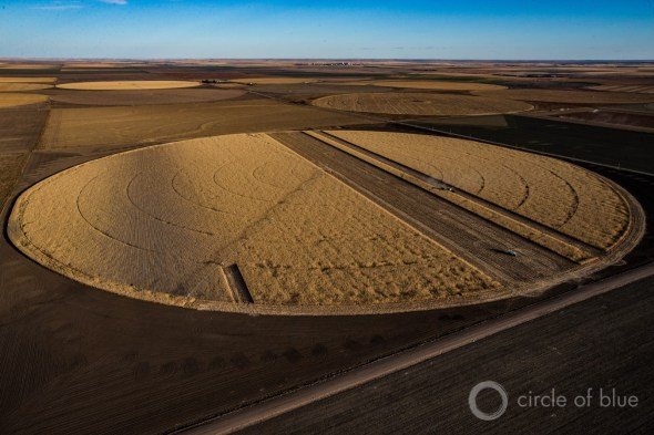 Kansas Ogallala Aquifer irrigation corn harvest brian lehmann Circle of Blue